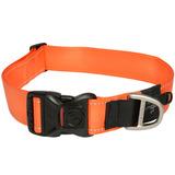 Rogz ошейник для собак Utility, цвет оранжевый
