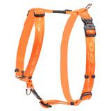 Rogz шлейка для собак Alpinist, цвет оранжевый