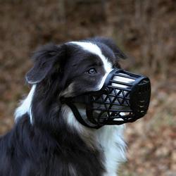 Trixie Намордник пластиковый, цвет черный