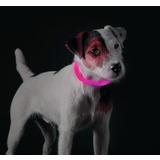 Hunter Yukon Светящийся ошейник-шнурок на шею, размер 20-70 см, розовый
