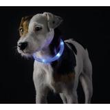 Hunter Yukon Светящийся ошейник-шнурок на шею, размер 20-70 см, голубой