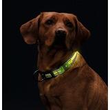 Hunter Manoa Glow Светящийся ошейник с USB зарядкой, цвет желтый