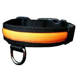 Dogcare ошейник светящийся, оранжевый, 36-51 см, шир. 2,5 см