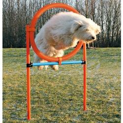 """Trixie Набор для аджилити """"Tire Jump"""""""