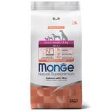 Monge Dog Monoprotein Extra Small корм для взрослых собак миниатюрных пород лосось с рисом