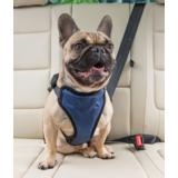 Solvit шлейка для перевозки собаки в автомобиле Deluxe Car Safety Dog Harness, размер M