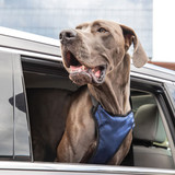 Solvit шлейка для перевозки собаки в автомобиле Deluxe Car Safety Dog Harness, размер XL
