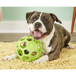 J.W. Hol-ee Roller игрушка для собак Мяч сетчатый, каучук