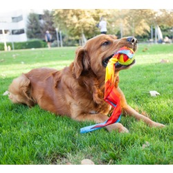Pet Stages игрушка для собак Comet Ball для бросков
