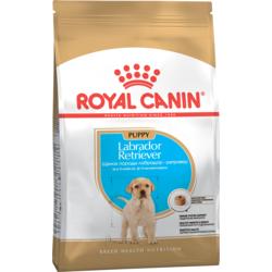 Royal Canine Labrador Retriever Junior для щенков породы лабрадор-ретривер