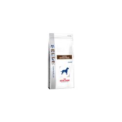 Royal Canine Gastro Intestinal GI25 для собак при нарушениях пищеварения