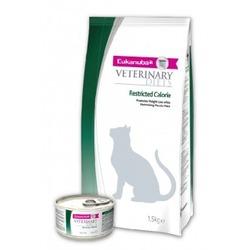 Eukanuba Restricted Calorie лечебный корм для кошек при ожирении, 1,5 кг