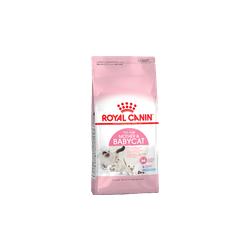 Royal Canin Mother&Babycat для котят в возрасте от 1 до 4 месяцев и беременных кошек