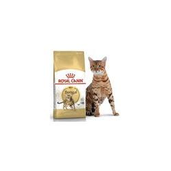 Royal Canin Bengal Adult Сухой корм специально для взрослых бенгальских кошек старше 12 месяцев.