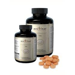 Anivital FeliDerm – комплекс для улучшения состояния кожи и шерсти кошек, 140 табл.