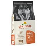 Almo Nature сухой корм для взрослых собак крупных пород с говядиной, Large Adult Beef and Rice Holistic