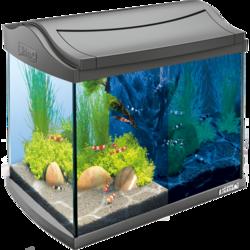 Tetra AquaArt LED Сrayfish аквариумный комплекс 20 л с LED освещением