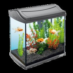 Tetra AquaArt LED Goldfish аквариумный комплекс 30 л с LED освещением