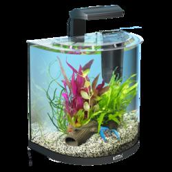 """Tetra AquaArt Crayfish 30 л - аквариумный комплекс """"Полумесяц"""""""