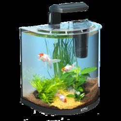 """Tetra AquaArt Goldfish 30 л - аквариумный комплекс """"Полумесяц"""""""