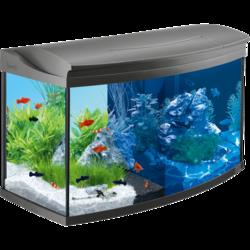 Tetra Аквариумный комплект AquaArt LED Evolution Line, 100 л