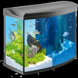 Tetra Аквариумный комплект Tetra AquaArt LED Evolution Line, 130 л