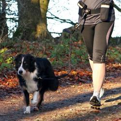 Trixie пояс для пробежки с собакой, поводок амортизатор 120 см.