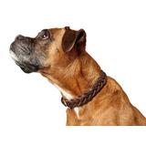 Hunter ошейник Solid Education Special, цвет коричневый