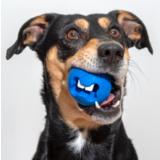 Rogz игрушка Fred с отверстиями для лакомств и массажными насечками, средняя, синяя, FRED TREAT BALL