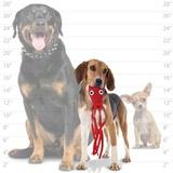 """Tuffy супер прочная игрушка для собак """"Обитатели океана"""" Кальмар, малая, красный, прочность 8/10, Ocean Creature Jr Squid Red"""